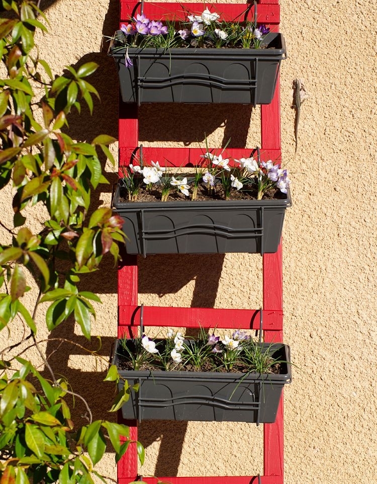 id e de diy pour d corer sa terrasse ou son jardin une chelle porte jardini re fleurie de. Black Bedroom Furniture Sets. Home Design Ideas