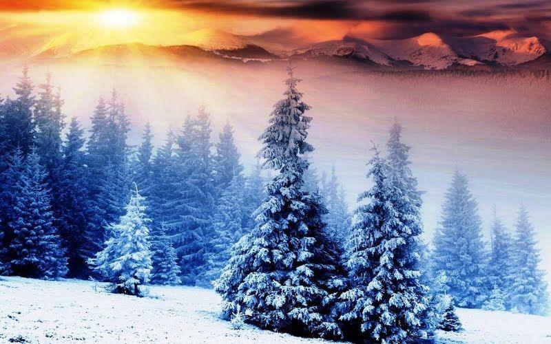 Winter Sunrise Wallpaper Nature Wallpaper Sunrise Wallpaper Landscape Wallpaper