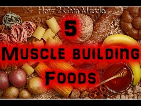 17+ 5 Great Muscle Building Foods [Full HD]