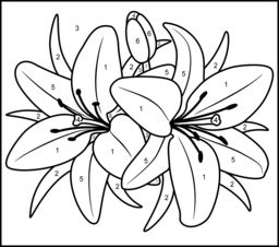 lily coloring pages Color By Number Coloring Pages For Adults | Lily   Printable Color  lily coloring pages