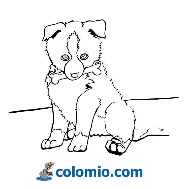 Dog Coloring Page Dog Coloring Page Coloring Books Cute Disney Drawings