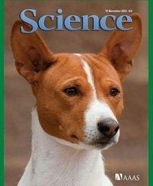 ¿Qué hace un perro en la portada de la revista Science? Te lo explicamos en Puromenu! :-) www.puromenu.es