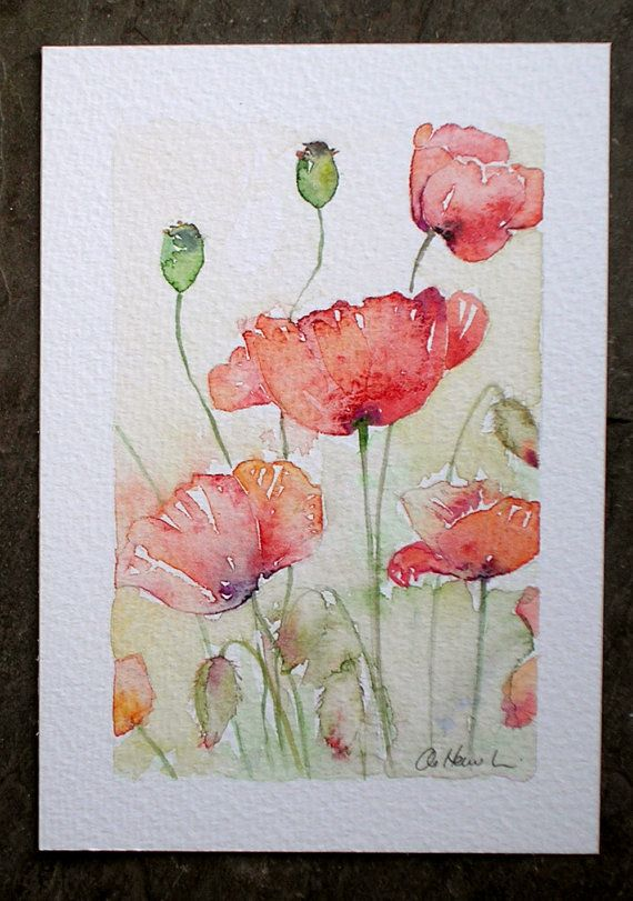 Sunlit Poppies Original Small Watercolour Painting By Amanda