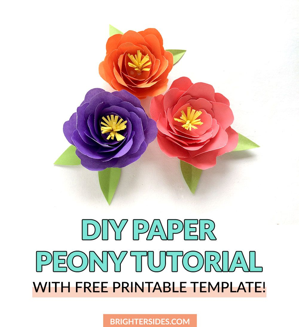 How To Make Paper Flowers  Peony Tutorial  aydas  Pinterest