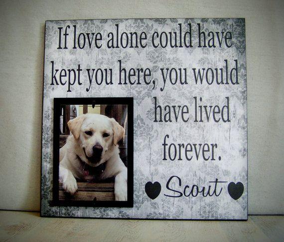 Pet Picture Frame Gift, Pet Memorial Gift, Dog Memorial Frame, Cat ...