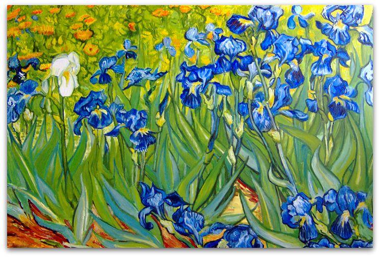 Wyspianski Szukaj W Google Van Gogh Irises Van Gogh Paintings Van Gogh