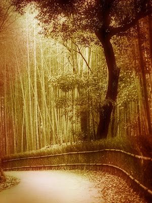 fantasy backgrounds for photoshop free download