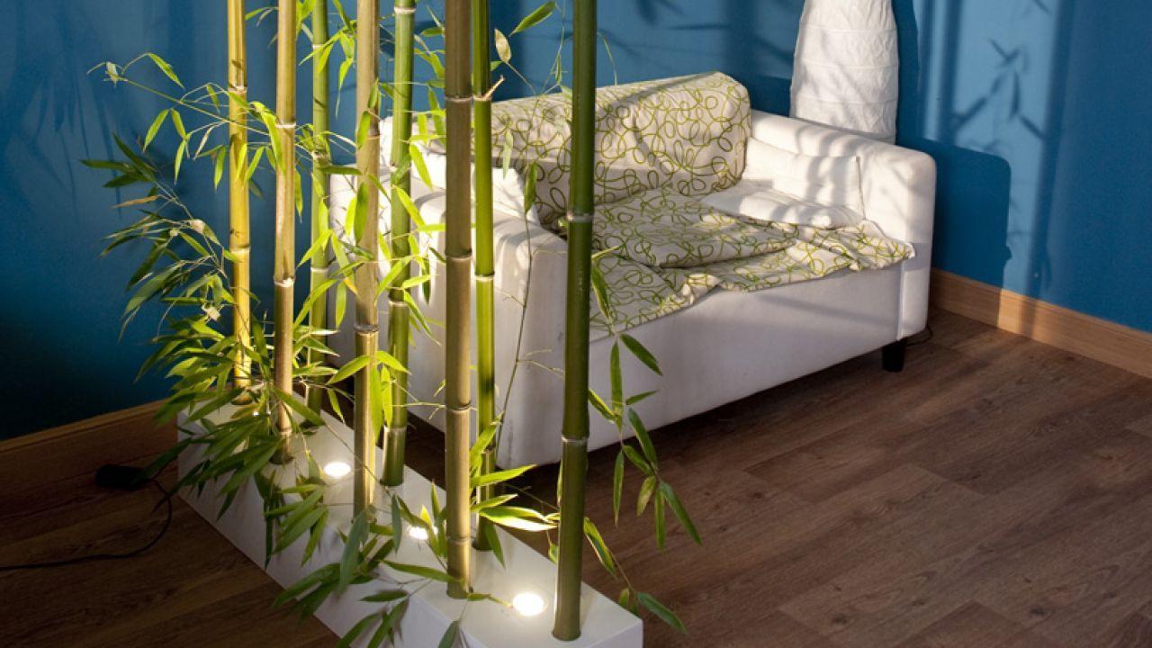 Separador de ambientes con ca as de bamb detalle for Bambu decoracion interior