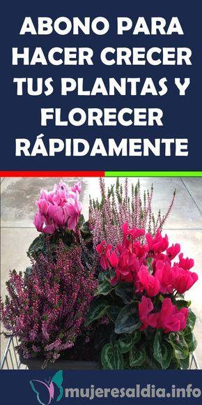 Abono Para Hacer Crecer Tus Plantas Y Florecer Rápidamente Abono Hacer Crecer Tus Plantas Jardin Bienestar Salud Organic Gardening Plants Garden