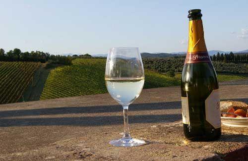 Wine destinations around the world   Italy, Florence ...