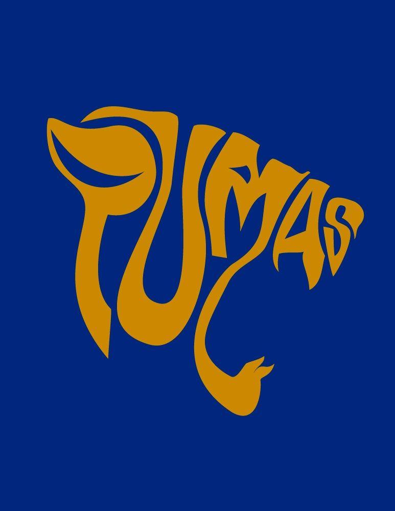 #lettering #pumas #unam