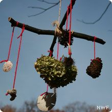 decorate the camp site with nature mobiles - another activity for the kids while we're setting up camp - just need to remember to take down when we leave