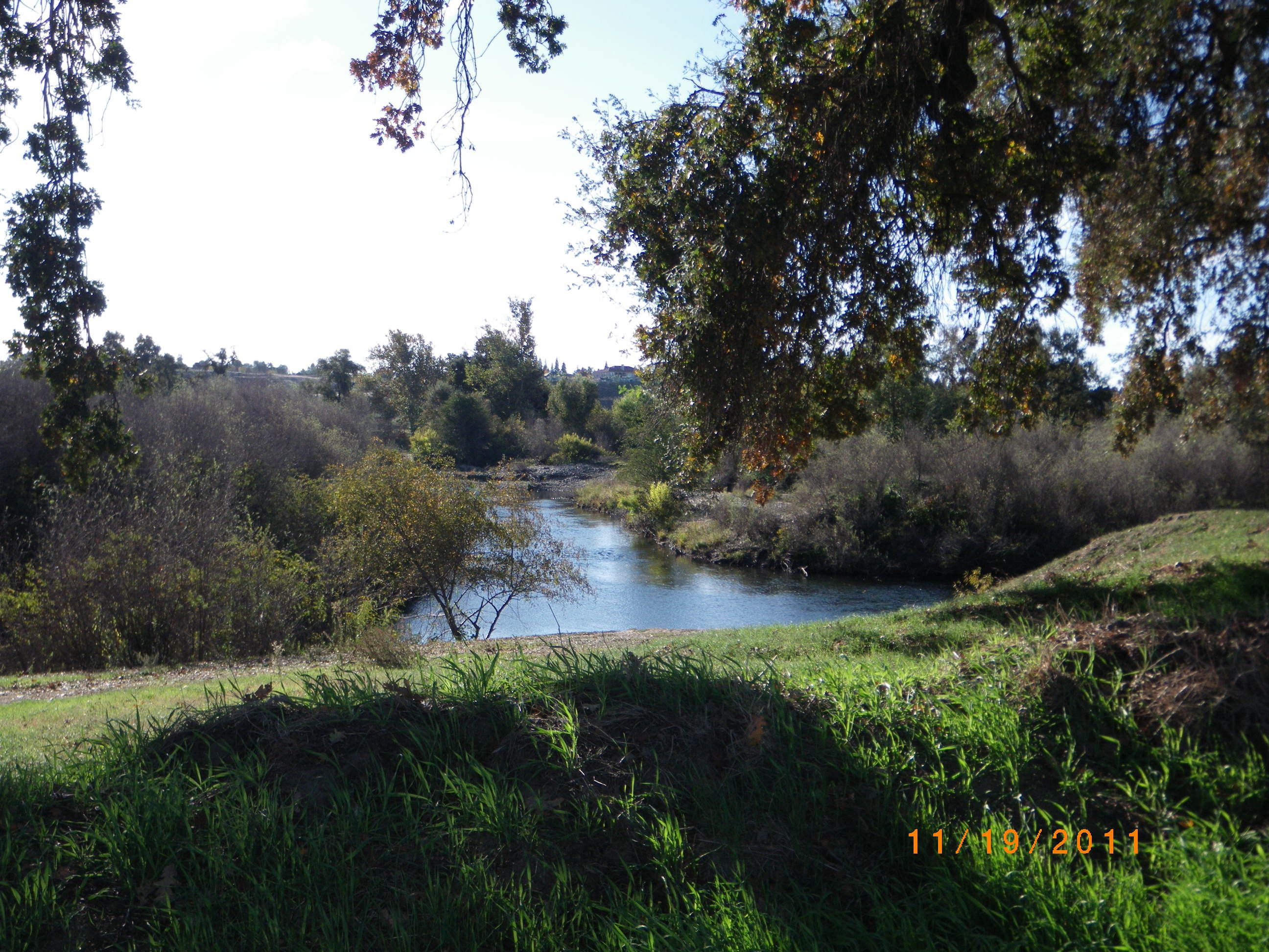 The san joaquin river my photos pinterest for San joaquin river fishing