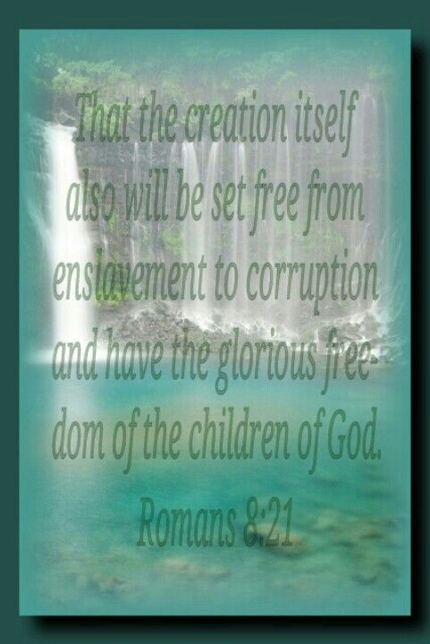 Romans 8:21 KJV translation = the creature itself also will be set free of the enslavement to corruption …  | Spiritual quotes, Books of the bible, Freedom in christ