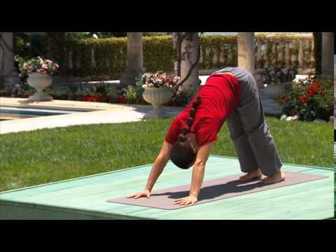 hatha yoga flow for beginners and all you will like this