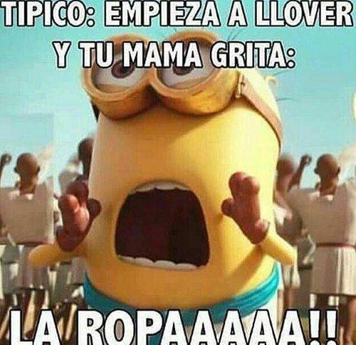 Imagen De Memes Chistes And Memes En Espanol Memes Funny Memes Chistes