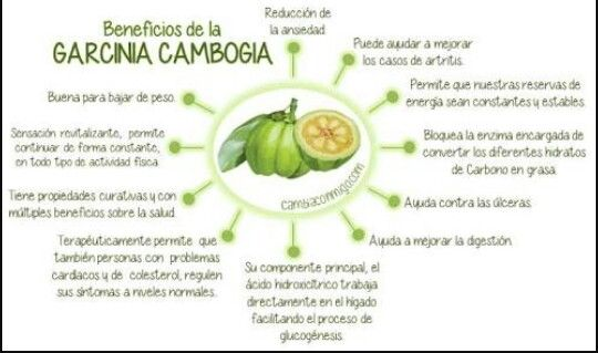 Beneficios de garcinia cambogia para adelgazar