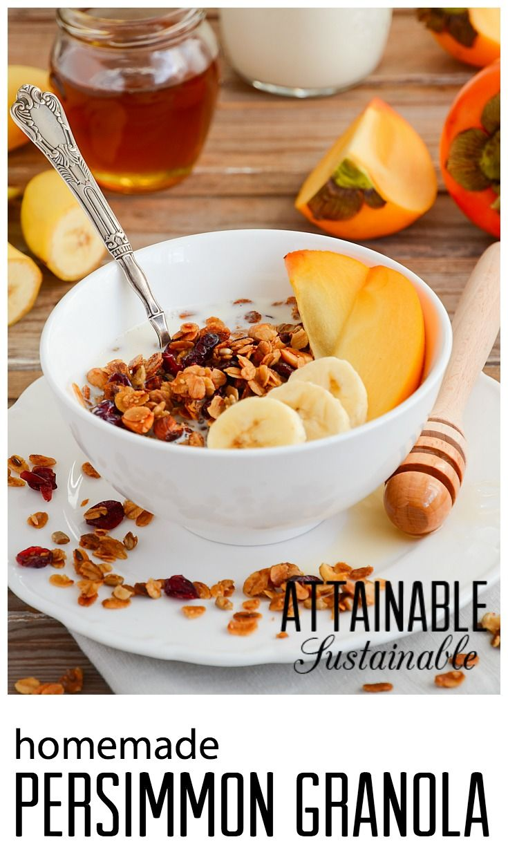 Homemade granola easy breakfast food to make at home recipes homemade granola easy breakfast food to make at home recipes homestead diy solutioingenieria Image collections