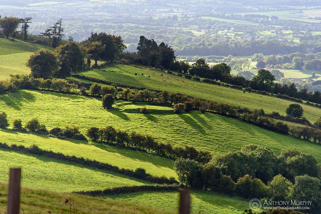 Ringfort in the sun Outdoor, Pictures, Ireland