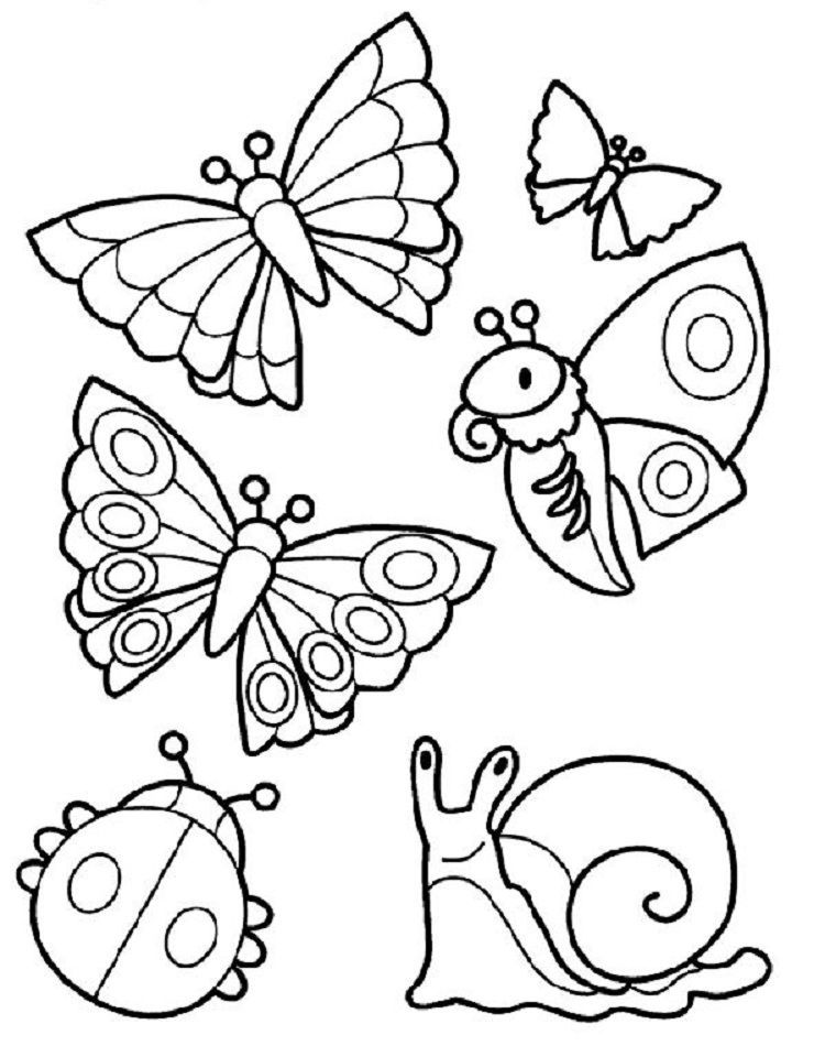 Summer Animals Coloring Pages Bug Coloring Pages Insect Coloring Pages Spring Coloring Pages