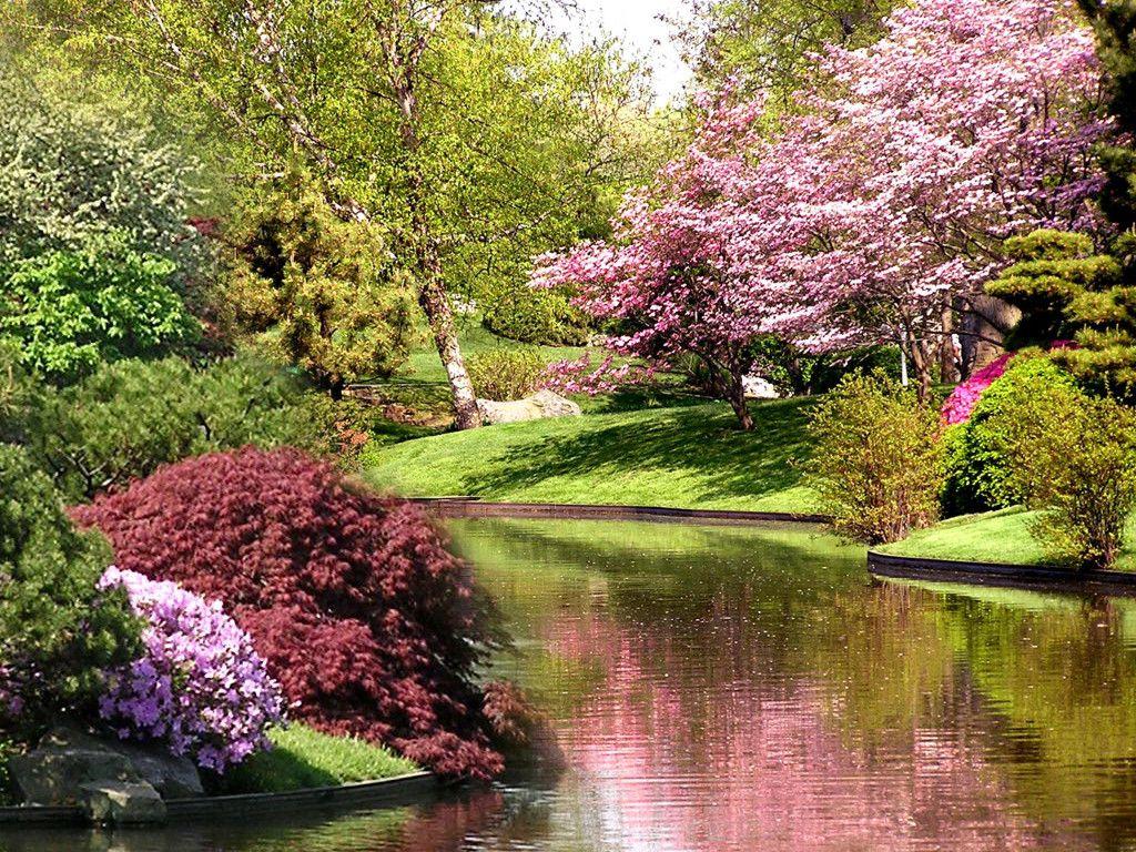 Springtime Fiolex Free Image Gallery Springtime