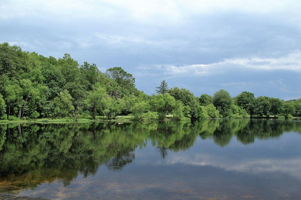 Reflexions on the Lake - Turkey Swamp Park - Freehold Township NJ