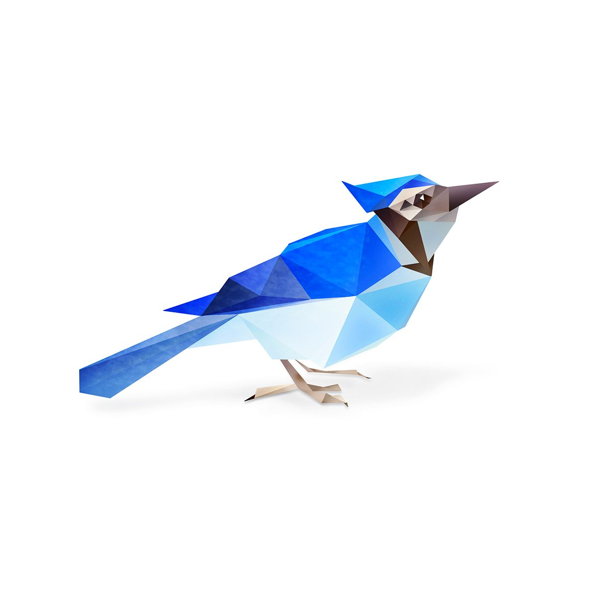 Low Poly Blue Jay. | Geometric | Pinterest | Low poly and Digital art