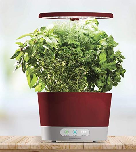 Smart Indoor Herb Garden With Images Gourmet Herbs 400 x 300