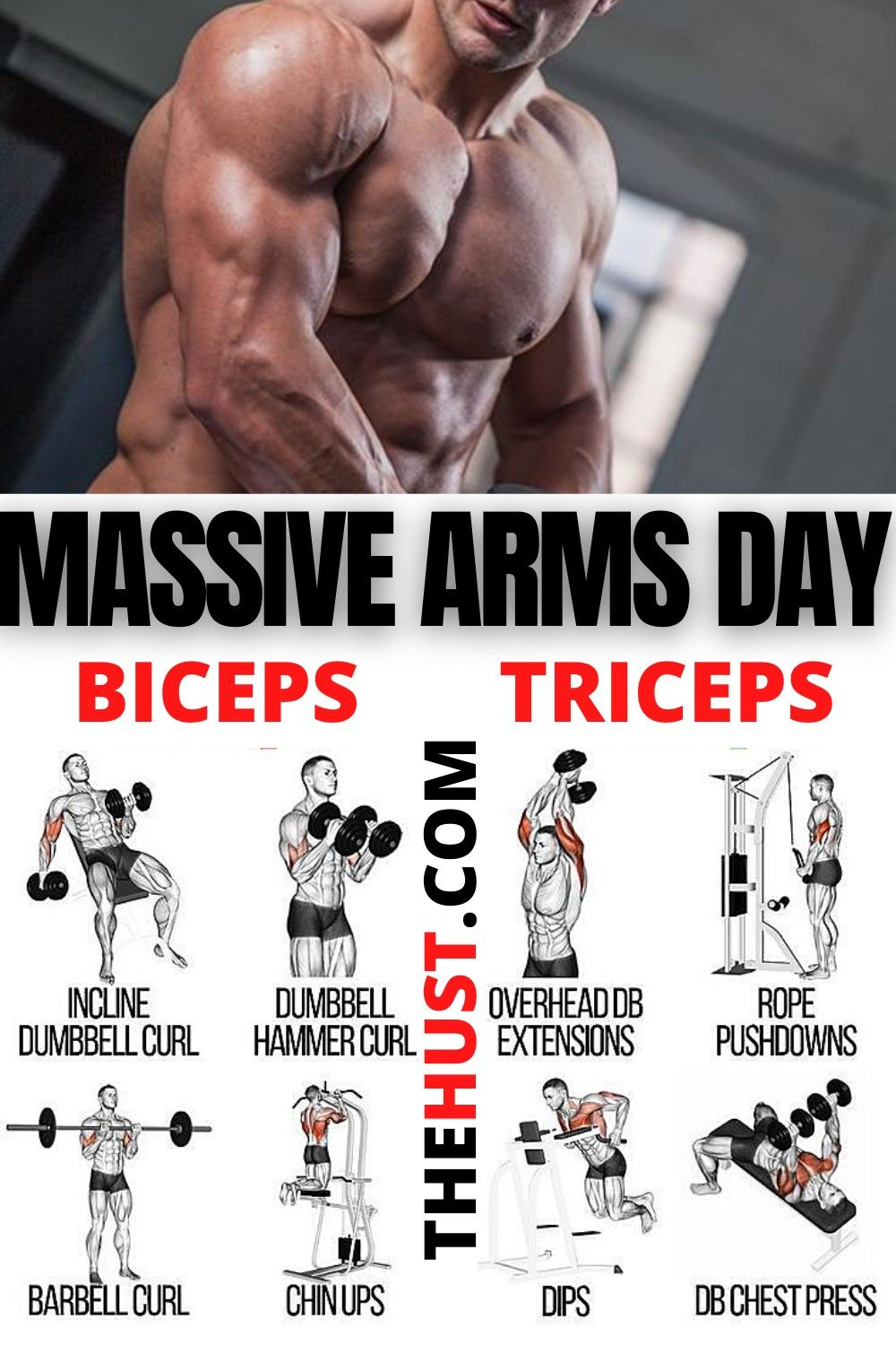 Arms Day Best Moves To Get Bigger Arms In 2021 Arm Day Workout Arm Workout Arms Workout Plan