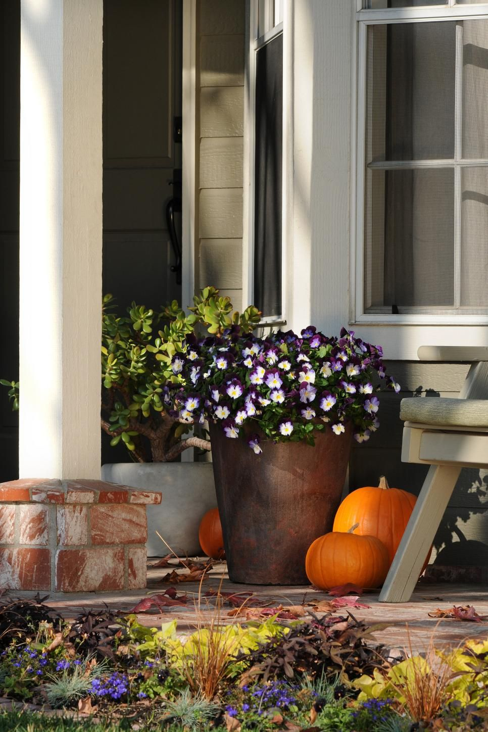 Discover fall container garden recipes filled with plants