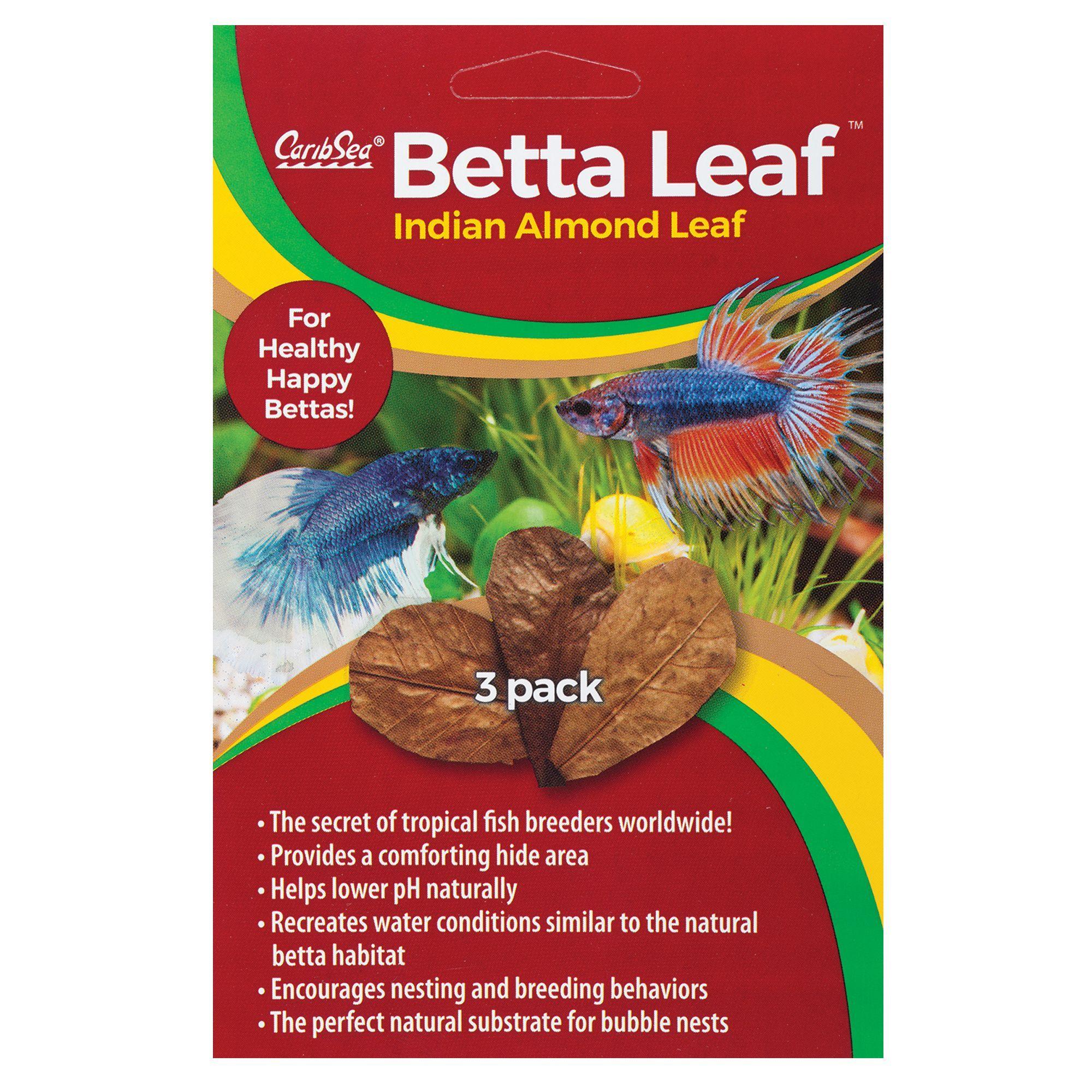 Caribsea Betta Leaf In 2020 Betta Betta Food Fish Tank Accessories