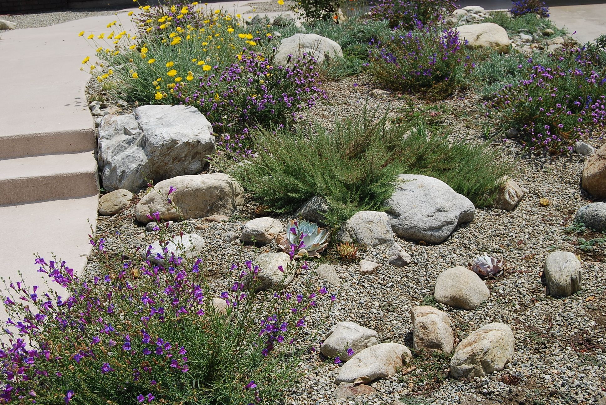 Beautiful Drought Tolerant Landscaping For Your Garden Design Ideas ...