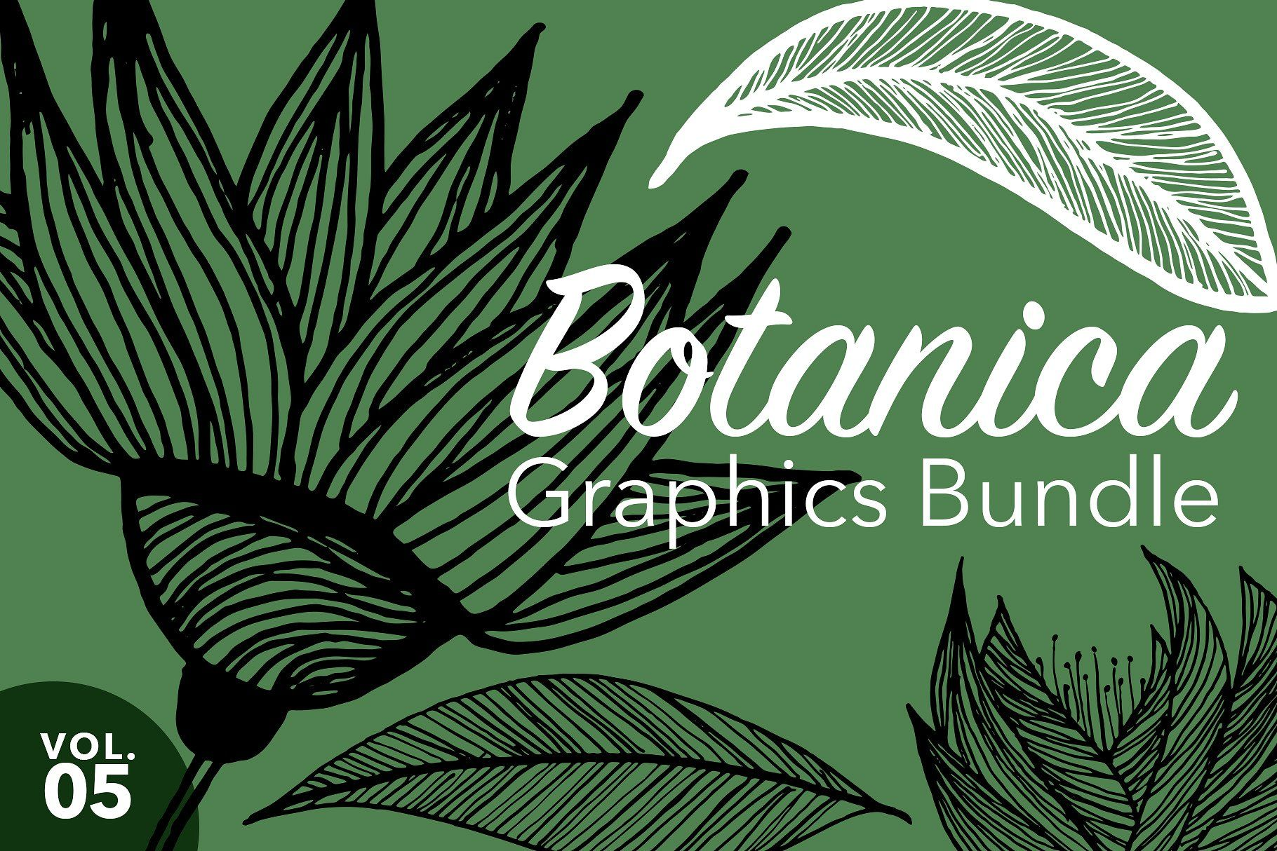 Nature Graphics Bundle Vol 5 With Images Nature Graphic Graphic Illustration