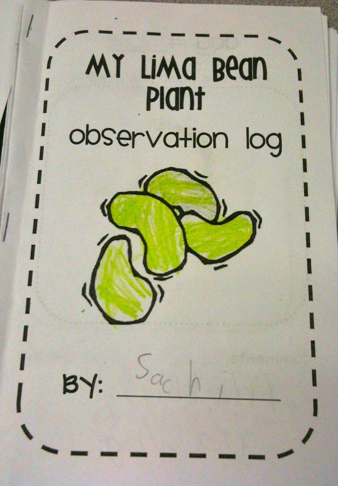 Lima Bean Plant Observation Log Tpt