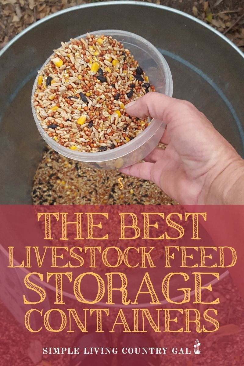 The Best Containers To Store Your Livestock Feed And Keep Mice Out In 2020 Chicken Feed Livestock Feed Feeding Goats