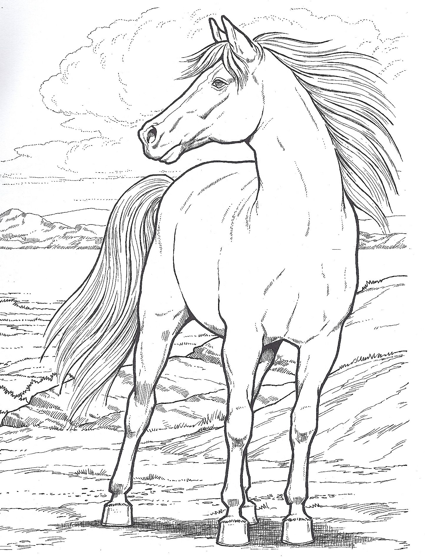 Standing Tall Horse Coloring Books Dover Coloring Pages Horse Coloring Pages [ 1888 x 1442 Pixel ]