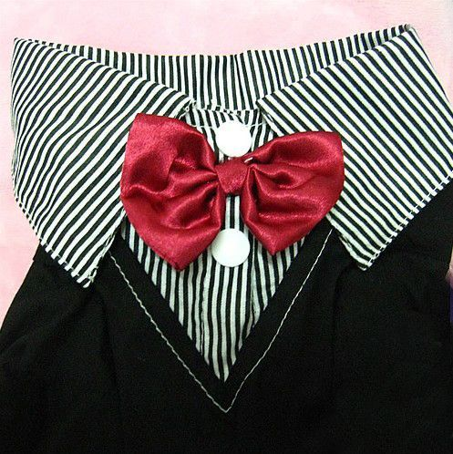 Male Dog's Two-Piece Suit w/ Red Bow Tie Pet Clothing