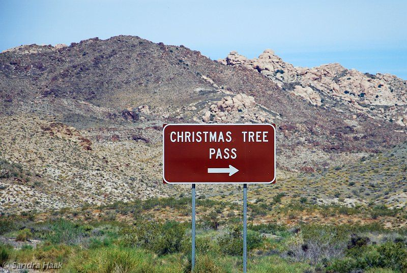 the route across the christmas tree pass starts about 6 miles west of laughlin nevada