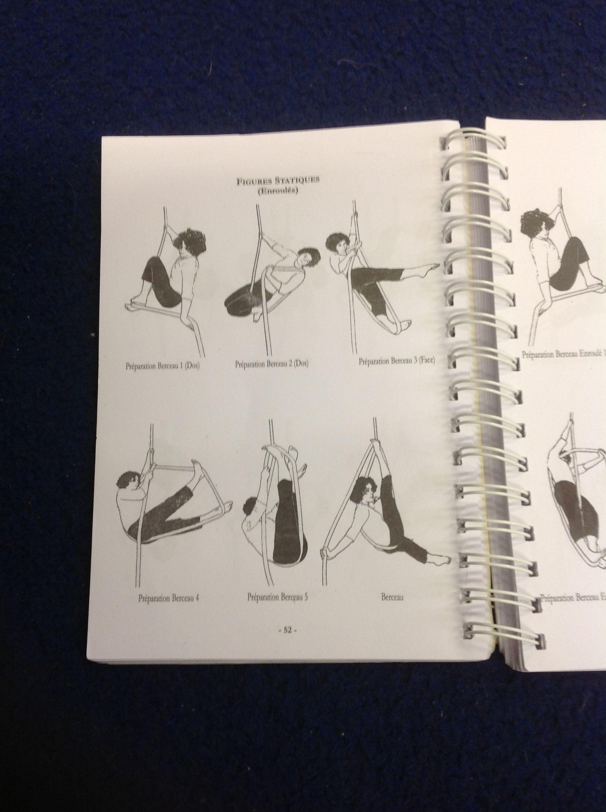 Aerial Ring Methodology Book