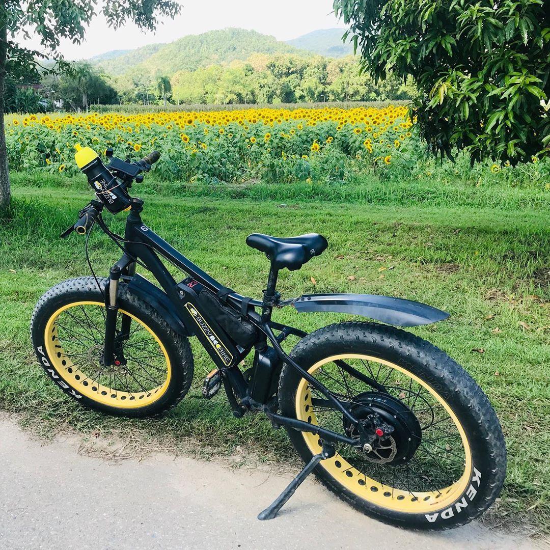 Buzzy Bee Bike Fatbike E Bike On Instagram We Love Yellow