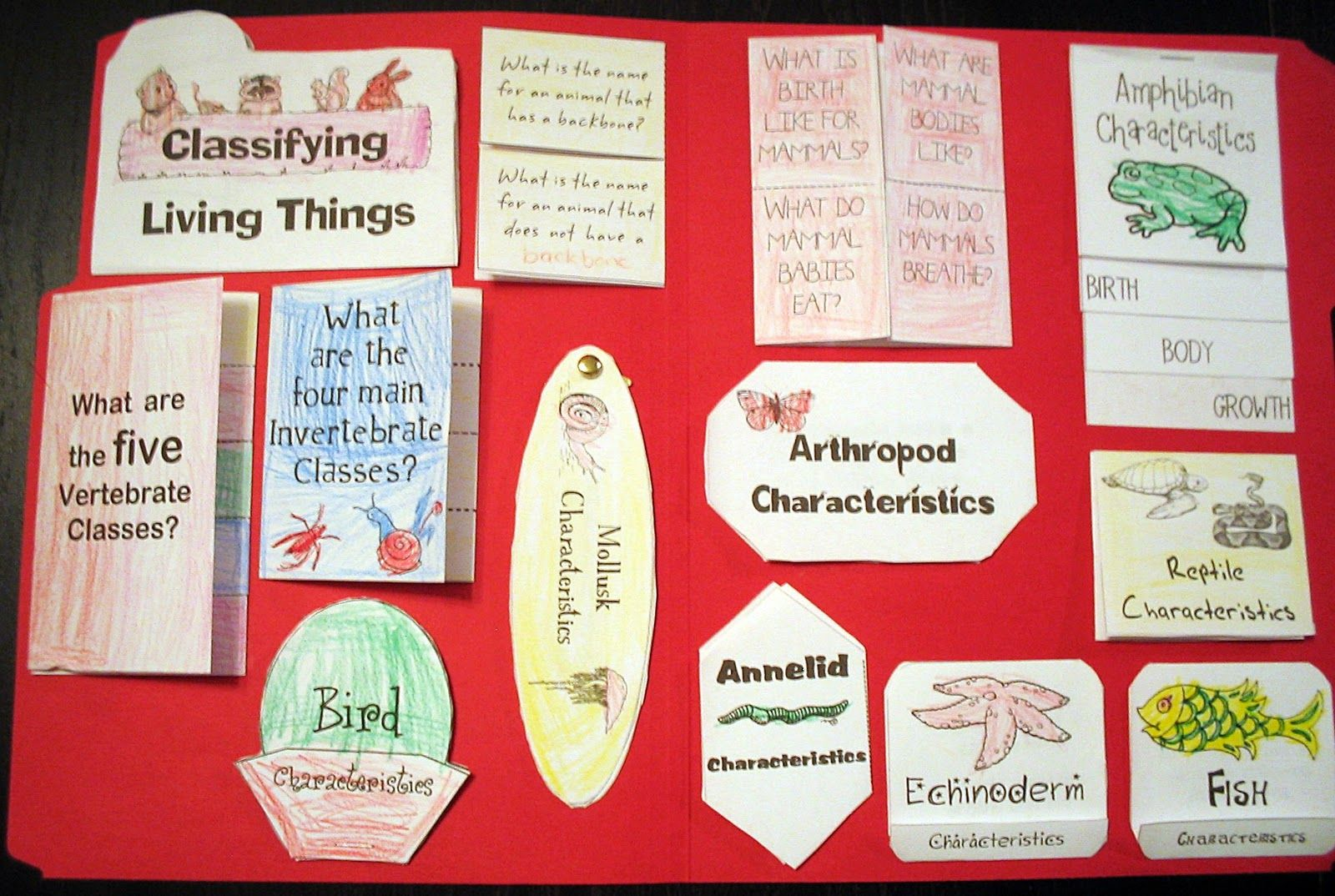 Vertebrates Invertebrates Lapbook