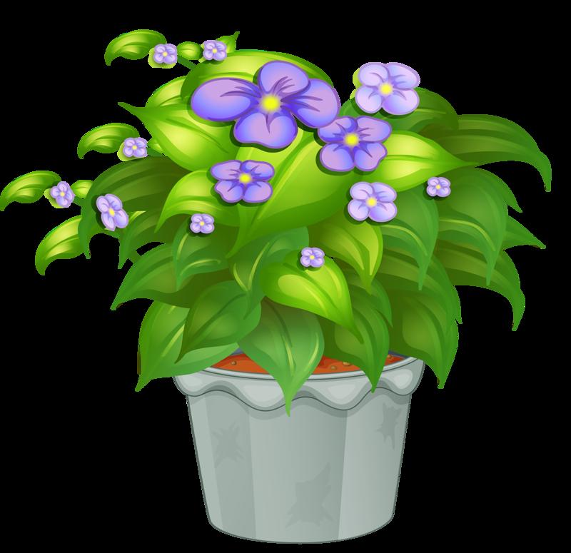 Картинки с растениями для детей, картинки работу прикольные