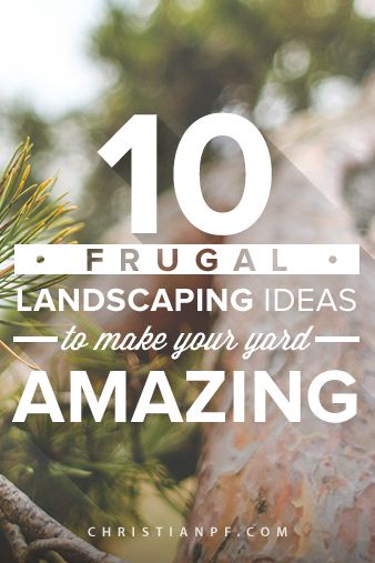 10 Frugal Landscaping Ideas to make Your Yard Amazing. 10 Frugal Landscaping Ideas to make Your Yard Amazing