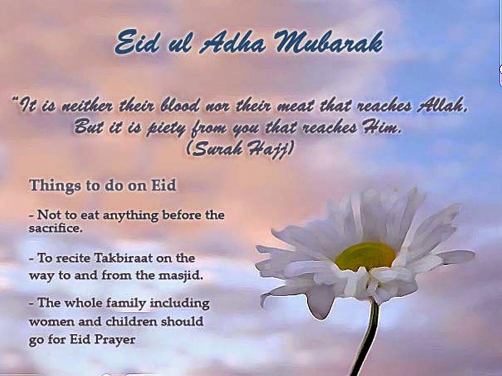 Pin by sarah jean on eid mubarak pinterest eid islam and happy eid mubarak wishes messages for friends kristyandbryce Choice Image