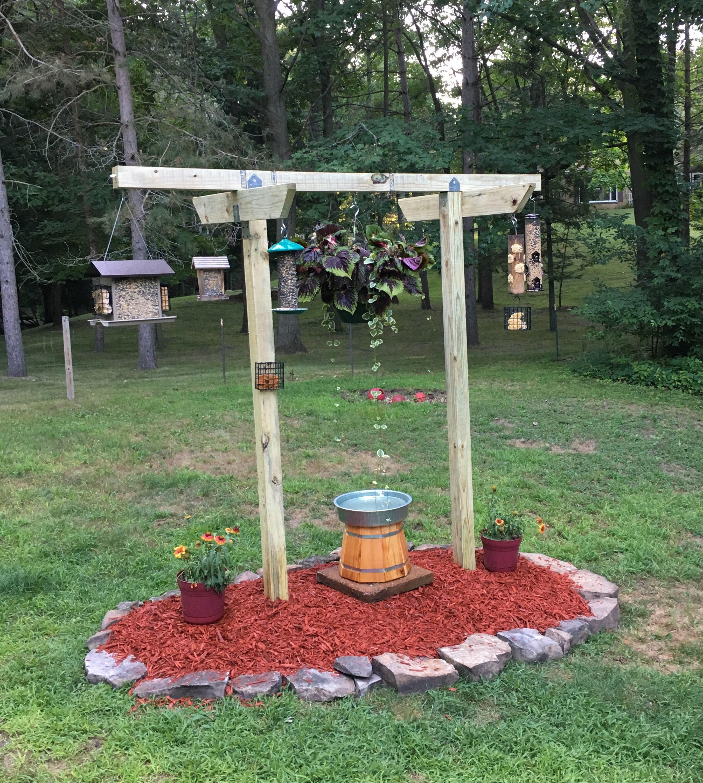 New Bird Feeder Station Bird Feeding Station Hummingbird Garden Garden Yard Ideas