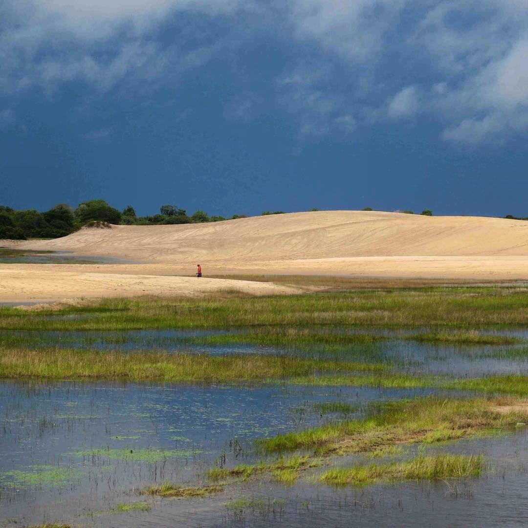 Médanos Blancos más allaíta del Cabo San Román. Médanos de Zapara en el Lago de Maracaibo. Médanos que caen en la Laguna de Cocinetas en el Golfo de Venezuela. Médanos muy vírgenes en La Guajira venezolana vía Castillete. Los que caen en la playa de Barlovento en Los Testigos. Los de Playa Parguito. Y estos que ven en la foto que son los Médanos de La Soledad a orilla de la carretera en la ruta San Fernando de Apure - Pto Ayacucho.