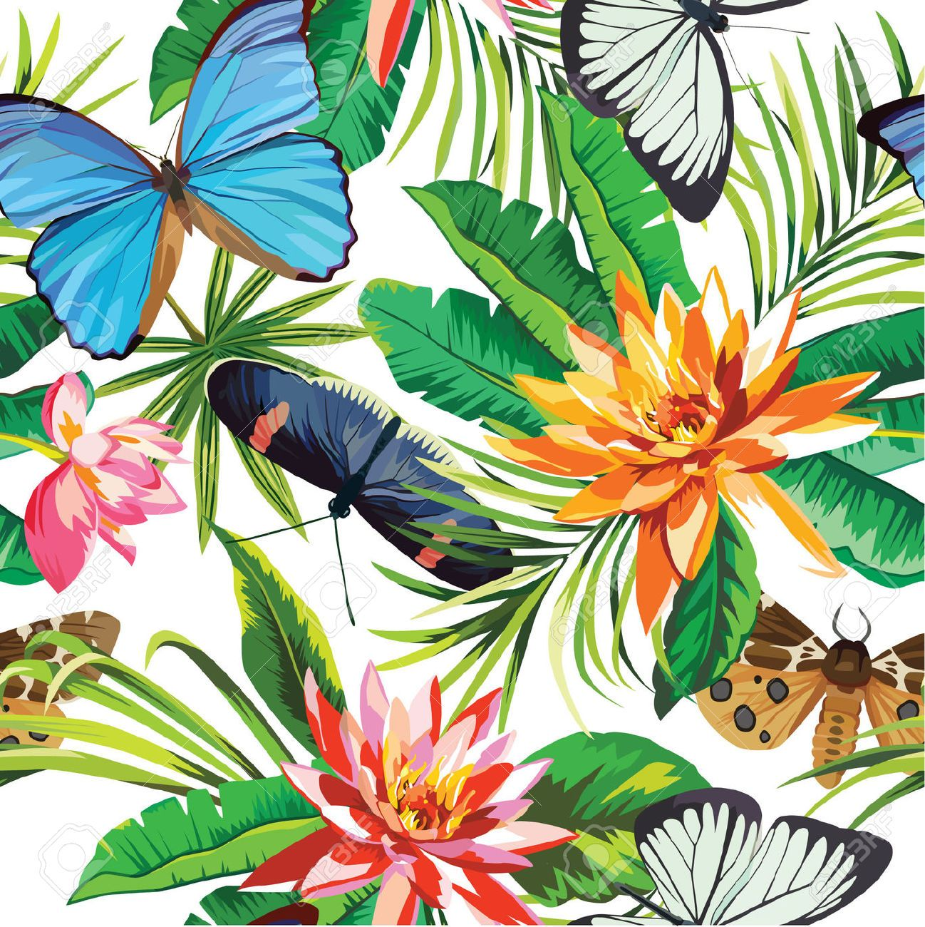 Butterflies And Tropical Flowers Pattern Royalty Free Cliparts Vectors Stock Illustration Pic