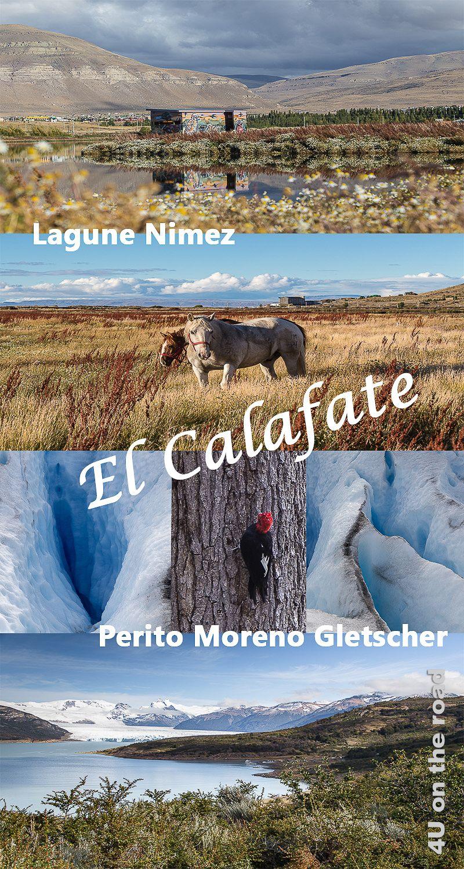 El Calafate In 2020 El Calafate Sudamerika Reise The Road