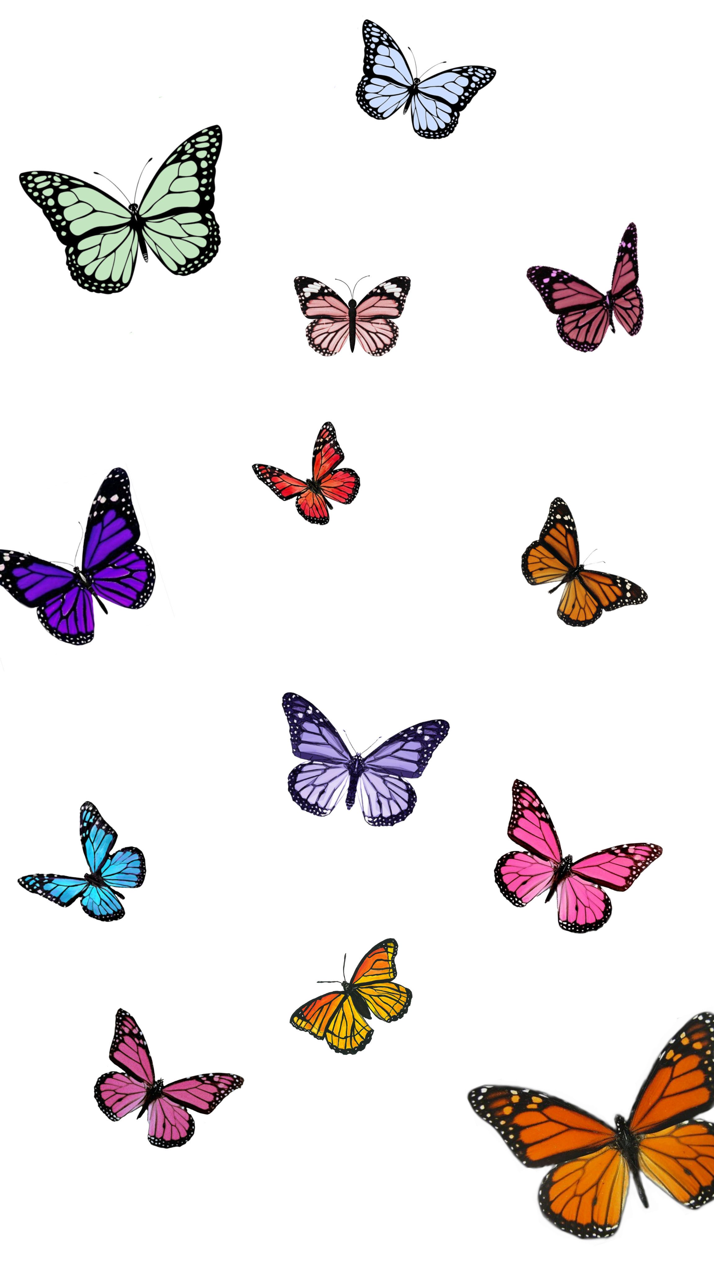 🦋🦋🦋 in 2020 | Butterfly wallpaper iphone, Aesthetic iphone ...