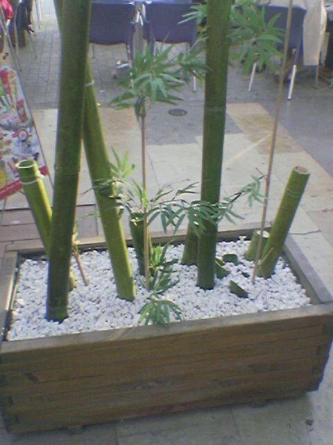 decoracion-con-bambu-1 Decoracion hogar Pinterest Coastal - decoracion con bambu